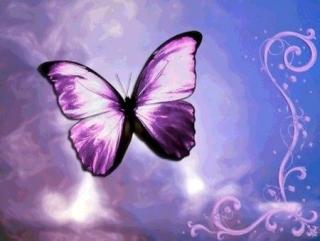 Si yo fuera una mariposa