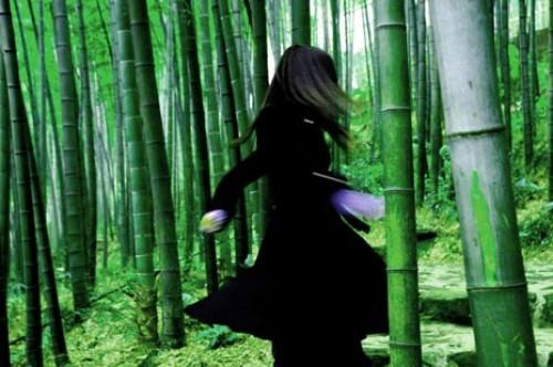 En el bosque de China