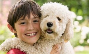 perros-para-los-ninos-300x183