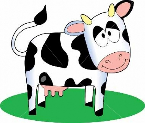 señora vaca