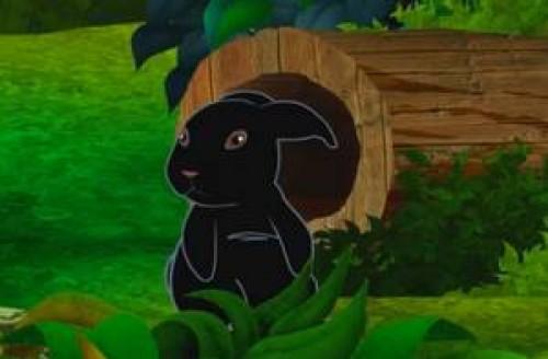 el conejito negro